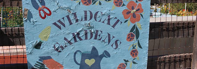 Wildcat Garden